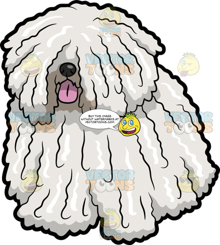 A Lovable Puli Dog