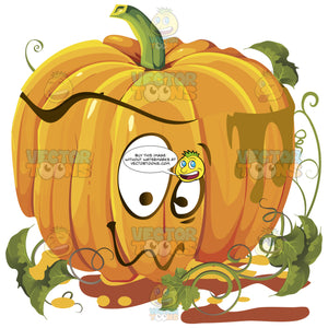 Bashful Orange Pumpkin Face With Green Vines