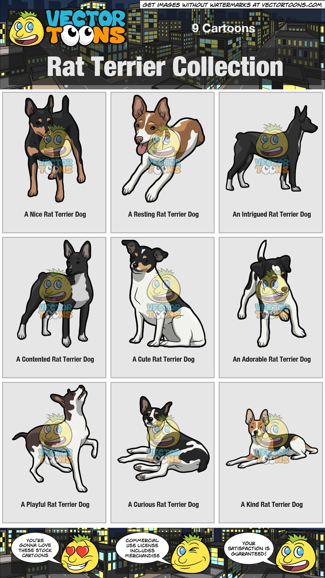 Rat Terrier Collection