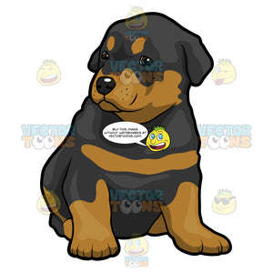 Cute Rottweiler Puppy Sitting On Floor