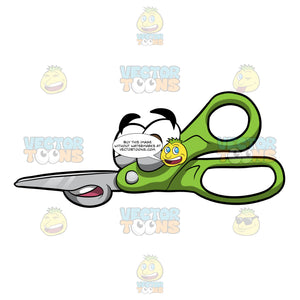 A Silly Looking Kitchen Shears