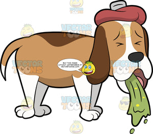 A Sick Dog Throwing Up. A dog with a two tone brown and white coat, droopy ears, shuts its eyes while throwing up a green barf, as a pale red ice bag is placed on its head