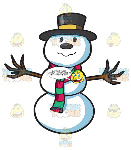 A Proud Looking Snowman