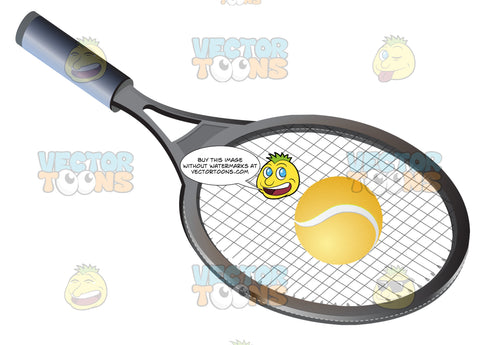Racquet And Yellow Tennis Ball