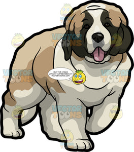 A Huggable St Bernard Dog