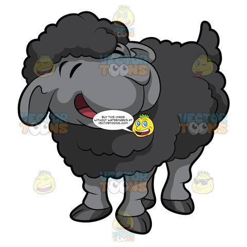 A Little Black Sheep