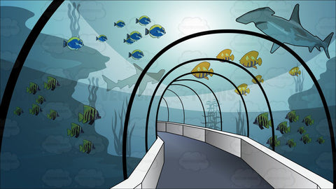 Tunnel Through An Aquarium Background