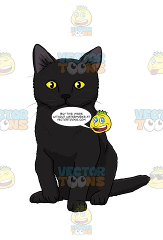 Black Kitten With Yellow Eyes Sitting And Looking Straight Ahead