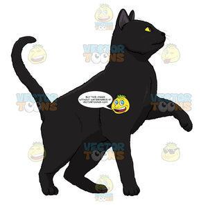 Black Cat With Yellow Eyes Standing With One Paw Off The Ground