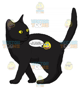 Black Kitten With Yellow Eyes Standing With Its Tail Up Looking Back