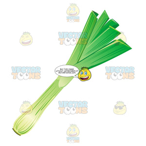 Cartoon-Like Green Onion