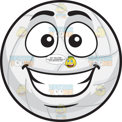 A Happy Volleyball