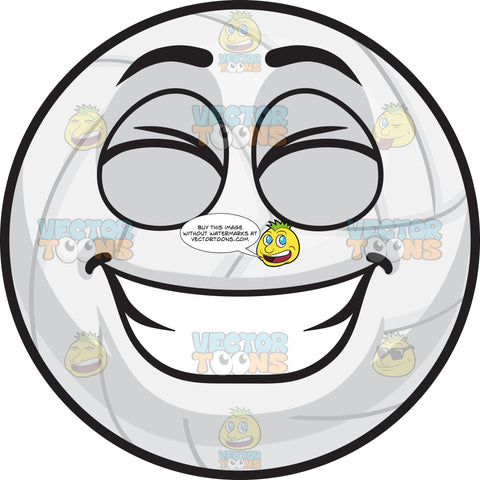 A Grinning Volleyball