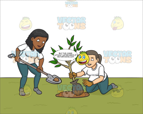 A Black Woman Volunteer Planting Small Tree