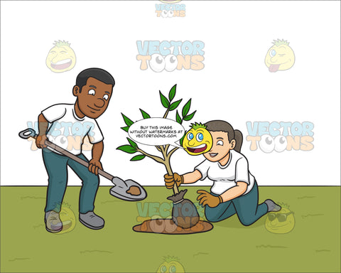 A Black Male Volunteer Planting Small Tree