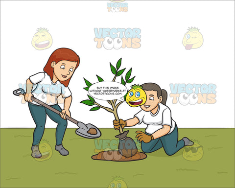 A Female Volunteer Planting Small Tree