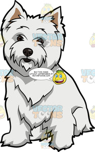 An Adorable West Highland White Terrier