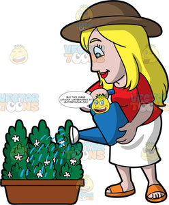 A Woman Watering A Green Plant With Small White Flowers. A woman with long blonde hair and blue eyes, wearing a white  skirt, a red shirt, orange sandals, and a brown sun hat, using a blue watering can to water a potted green plant with small white flowers