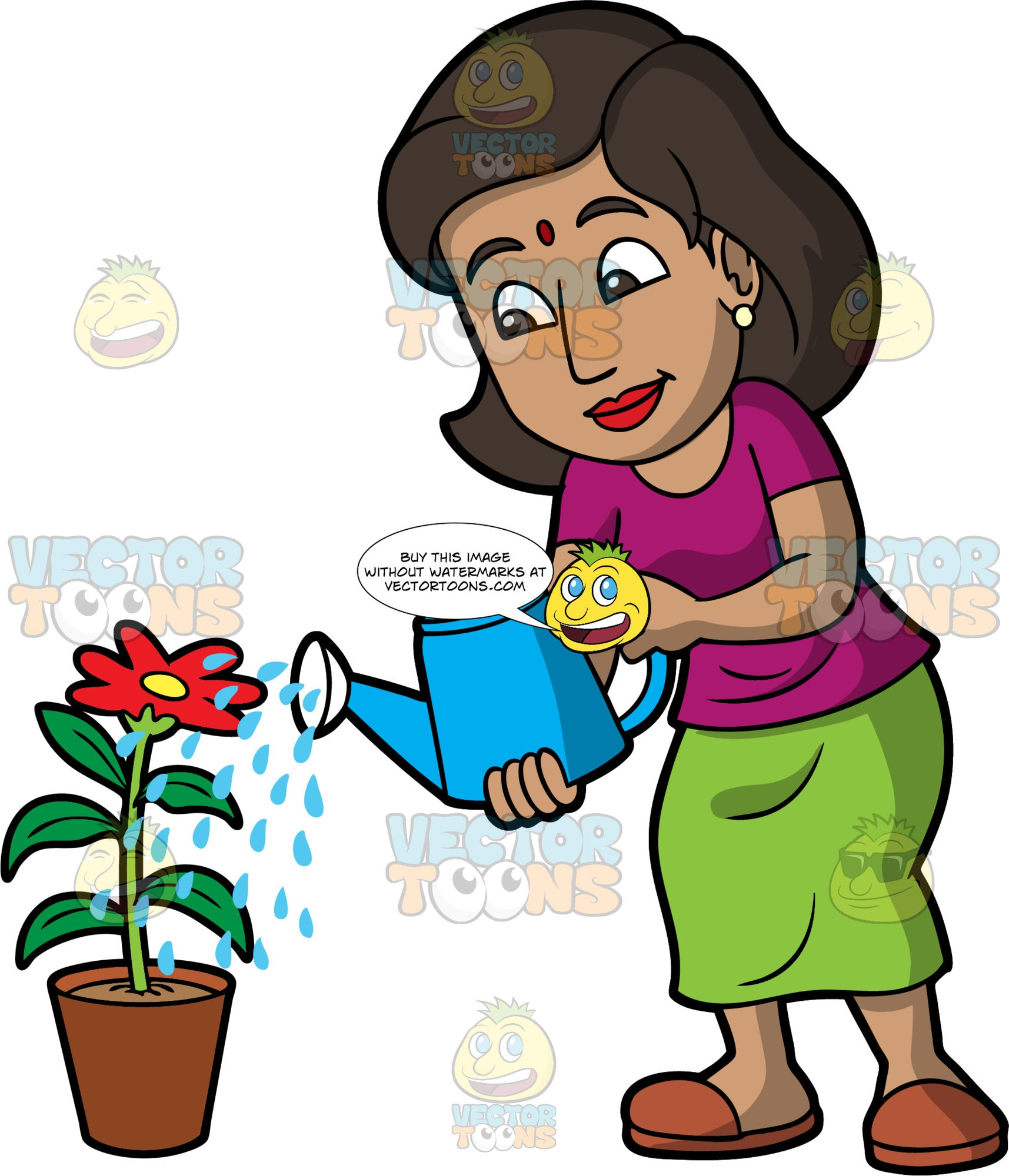 An Indian woman water a potted flower. An Indian with dark brown hair, wearing a long green skirt, a purple shirt, and brown slip on shoes, uses a blue watering can to water a red flower in a pot