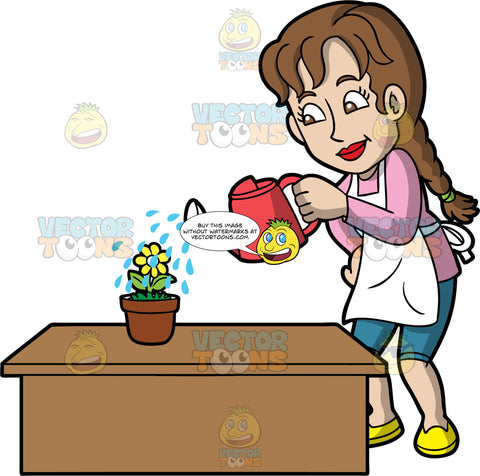 A woman watering a flower. A woman with long brown hair tied in a braid, wearing blue capri pants, a pink shirt, yellow shoes and a white apron, uses a red watering can to water a potter yellow flower on a brown table