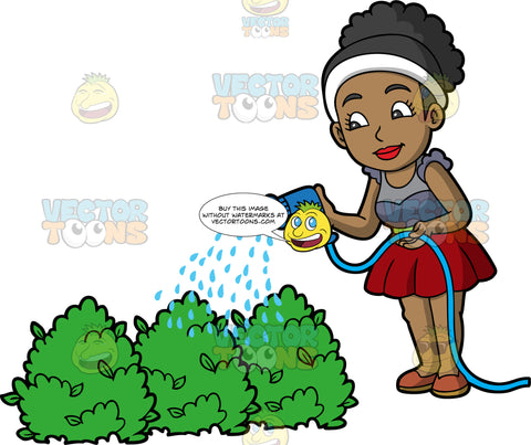 A black woman using a hose to water some bushes. A pretty black woman wearing a red skirt, a gray shirt, and brown shoes, using a blue watering hose to water some green bushes outside