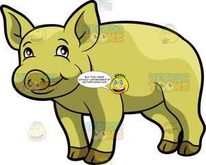 A Friendly Yellow Pig