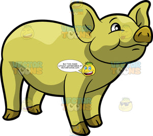 A Cute Yellow Pig