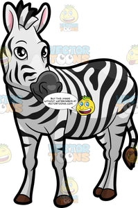 A Zebra Looking Off To The Side
