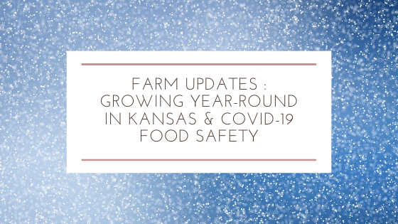 Farm Updates : Growing Year-Round in Kansas & Covid-19 Food Safety