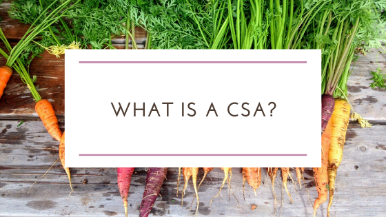 What is CSA? Community Support Agriculture and Its Benefits to You and Your Local Farmer
