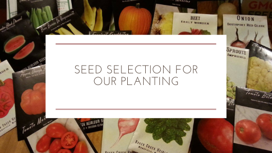 Seed Selection for Our Planting