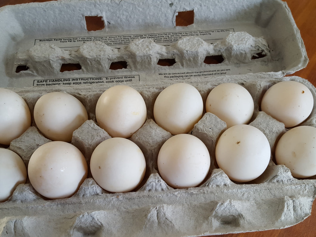 Pastured Duck Eggs