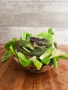 Simply Salad Endless Winter Lettuce
