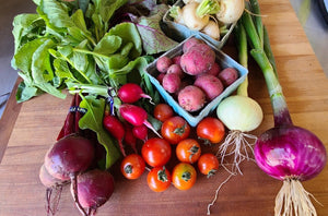 12 Week Community Supported Agriculture - Weekly Subscription