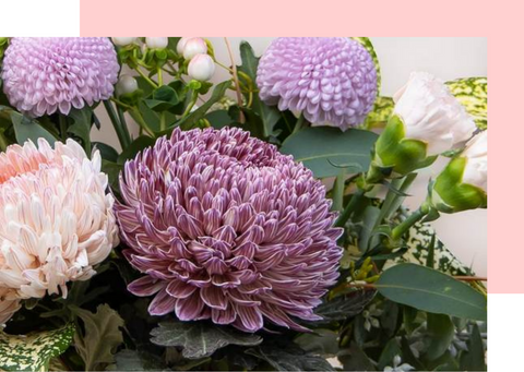 best flowers to give on Mother's day