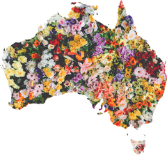 map of australia made of flowers