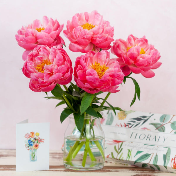 Coral Peonies - Floraly Australia