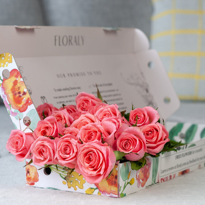 Deluxe Blush Roses - Floraly Australia
