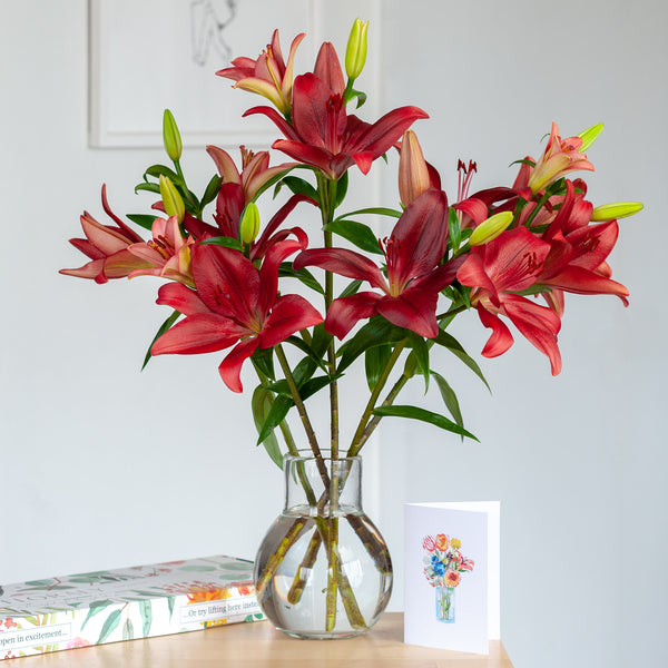 Red Tiger Lilies - Floraly Australia