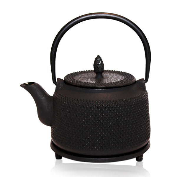 Strength Black Cast Iron Teapot