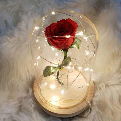 VALENTINE'S DAY SALE - 50% OFF - Beauty And Beast Rose Dome - theprimelabel