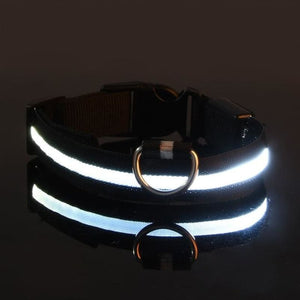 USB Rechargable Dog LED Flashing Collar Pet - theprimelabel