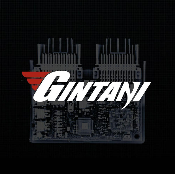 Gintani BMW E90/92 M3 ECU Tune