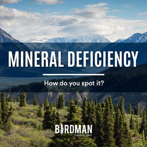 What's a Mineral Deficiency?