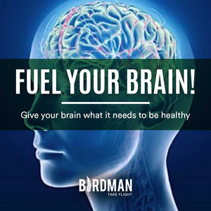 Brain Fuel - Give your Brain what it Needs!