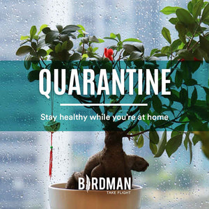 Stay Healthy During Quarantine!