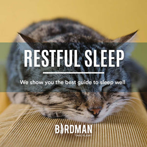 Complete Guide for a Great Sleep