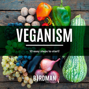 10 Steps to Start a Vegan Lifestyle