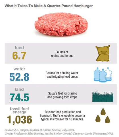 Meat Consumption Effect on The planet