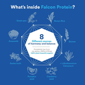 Falcon Protein - Plant-Based Protein Powder 2.18 lb (Vegan), 33 Servings, Vanilla Flavor